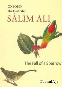 The Fall of a Sparrow(Paperback)