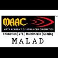 Maya Academy of Advanced Cinematics(MAAC)