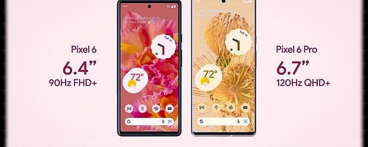 Google Pixel 6 vs Pixel 6 Pro Which Smartphone Should You Buy?